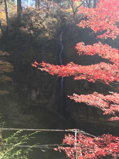 小さな瀧、紅葉が綺麗